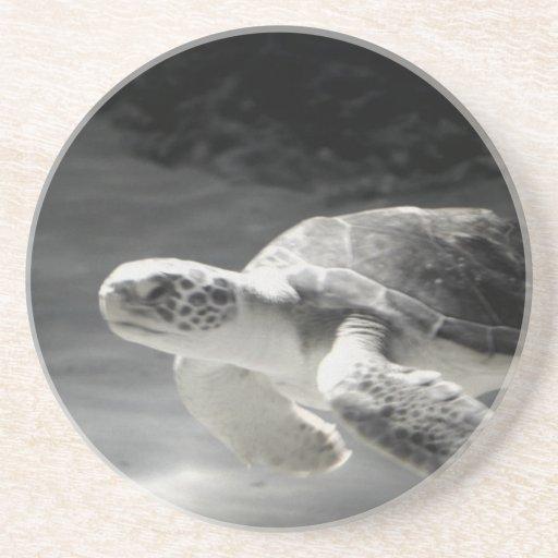 Decoración del hogar de la tabla de la tortuga posavasos para bebidas