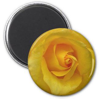 Decoración del recuerdo de los regalos de la flor imán redondo 5 cm