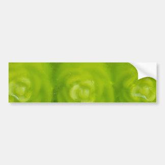 decoración floral verde etiqueta de parachoque
