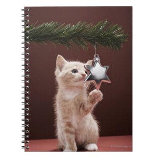 Decoración pawing del navidad del gatito en árbol libro de apuntes