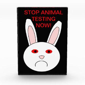 Decoración triste del conejo del laboratorio