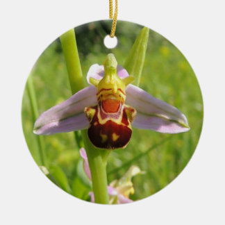 """Decoration """"Ophrys """""""