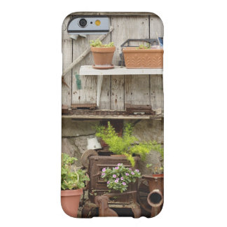 Decorations on wooden fence, Catalina Island, Barely There iPhone 6 Case