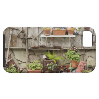 Decorations on wooden fence, Catalina Island, iPhone 5 Cases