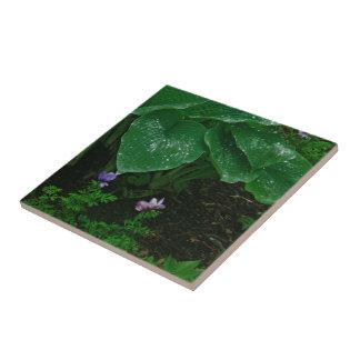 Decorative Ceramic Tile/ Hostas With Raindrops Tile