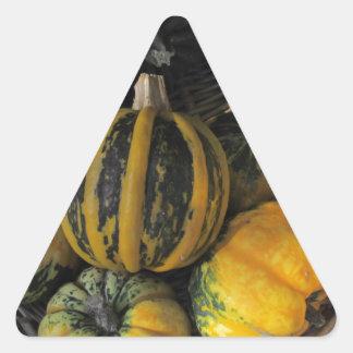 Decorative Colorful Pumpkins Stickers