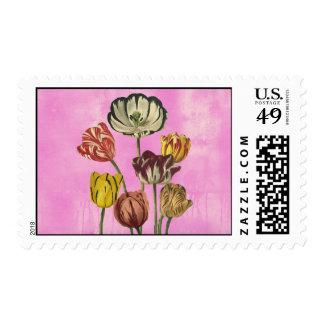 DEcorative floral art on pink wash background Postage Stamp