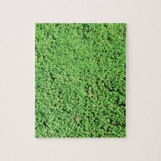 Decorative green grass jigsaw puzzle