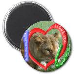 Decorative Lion Magnets