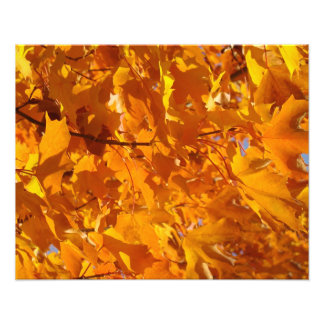 Decorative Photography art prints Golden Leaves Photograph