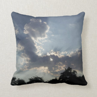 Decorative pillow with a different pic on each sid
