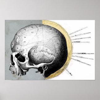 decorative poster:: psicografo - boss