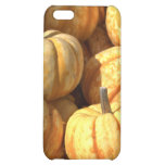 Decorative Pumpkins Cover For iPhone 5C