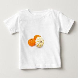 Decorative Pumpkins T Shirt