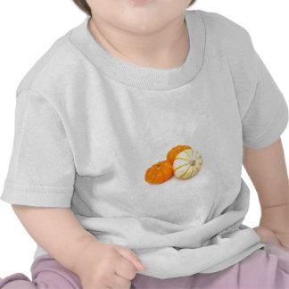 Decorative Pumpkins T Shirts