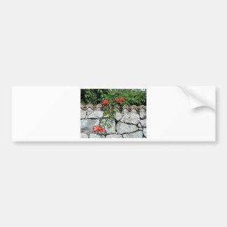 Decorative stone wall with colorful flowers bumper sticker