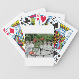 Decorative stone wall with colorful flowers bicycle playing cards