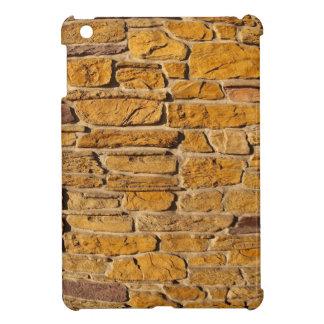 Decorative wall with wide angle fisheye view iPad mini cover