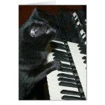 Decreto del órgano del gato felicitación