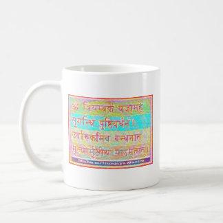 Dedication to MAHA-MRITUNJAY Mantra Mug