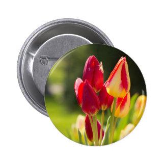 Dedos del pie de la extremidad del tulipán pins