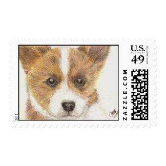 """""""Dee-Jay"""" el sello del perrito del perro del Corgi"""