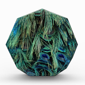 Deep Blue And Green Peafowl Feathers Award