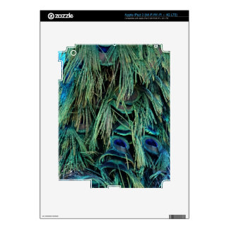 Deep Blue And Green Peafowl Feathers Decal For iPad 3