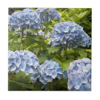 Deep Blue Hydrangeas Ceramic Tile