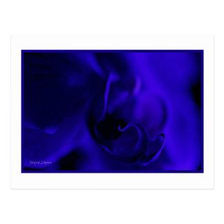 Deep Blue Orchid, macro floral, template Postcard