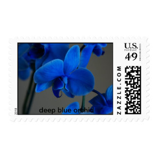 deep blue orchid postage stamp