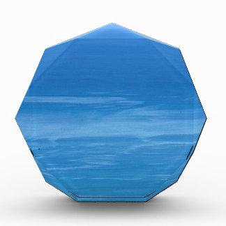 deep blue sea award