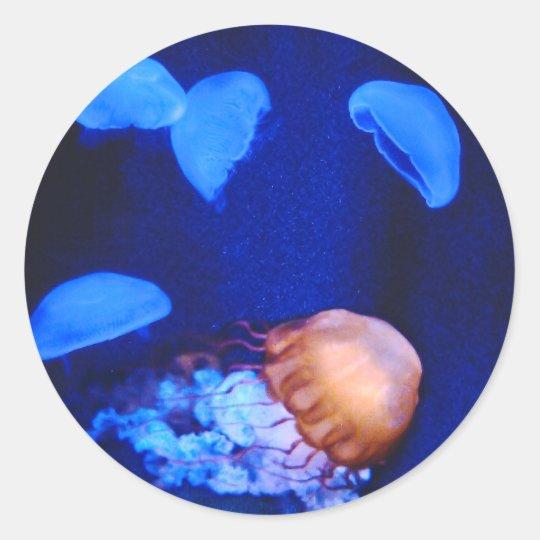 Deep Blue Sea Jellyfish Classic Round Sticker