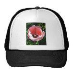 Deep Bright Pink Hat