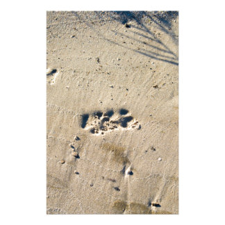 Deep footprints big dog on the sandy shore stationery