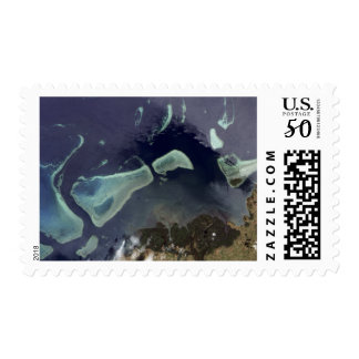 Deep green forest on land postage