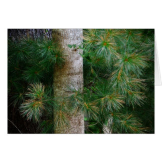 Deep In The Pines Note Card