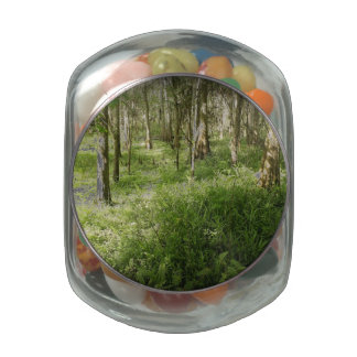 Deep in the Woods Glass Candy Jars