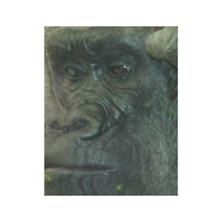 Deep In Thought Gorilla Canvas Print