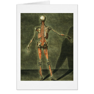Deep Muscular System of the Back of the Body, plat Greeting Card