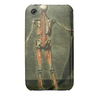 Deep Muscular System of the Back of the Body, plat iPhone 3 Case