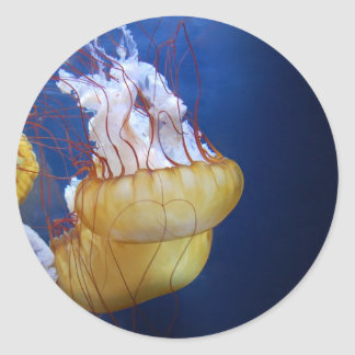 Deep Ocean Jelly Fish Classic Round Sticker