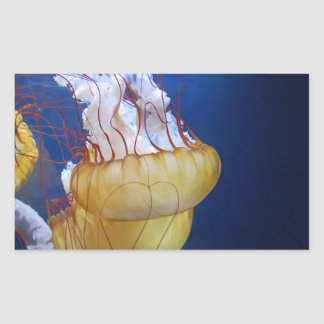 Deep Ocean Jelly Fish Rectangular Sticker