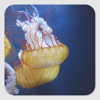 Deep Ocean Jelly Fish Square Sticker