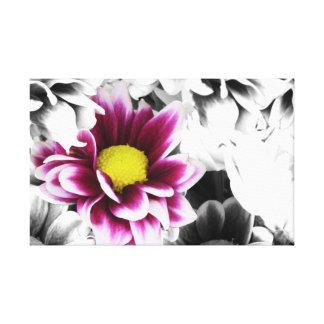 Deep Pink Dahlia Canvas Print