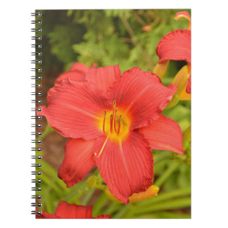 Deep Pink Lily Spiral Note Book