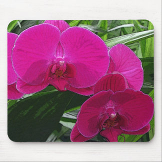 Deep Pink Orchids Mouse Pad