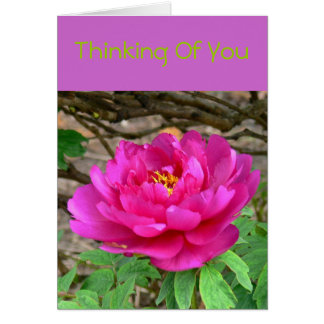 """DEEP PINK PEONY/THINKING OF YOU"" NOTECARD"