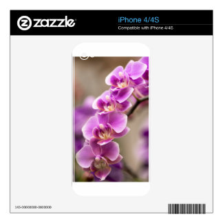 Deep Pink Phalaenopsis Orchid Flower Chain Skin For iPhone 4S