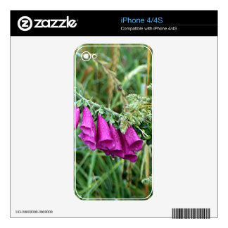 Deep pink purple foxglove on El Camino, Spain Decals For The iPhone 4S